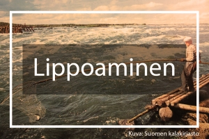 Landing page Lippoaminen