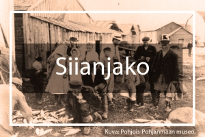 Landing page Siianjako