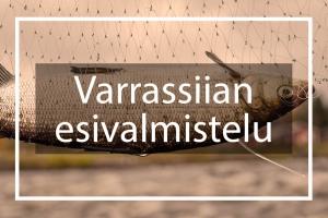Landing page Varrassiian esivalmistelu